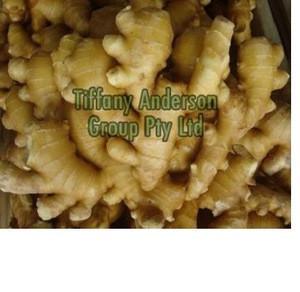 Fresh Ginger , Air dried Ginger