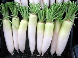 Salted white radish in brine from Vietnam