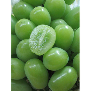 Wholesale Japanese sweet fresh seedless green grapes with favorable price