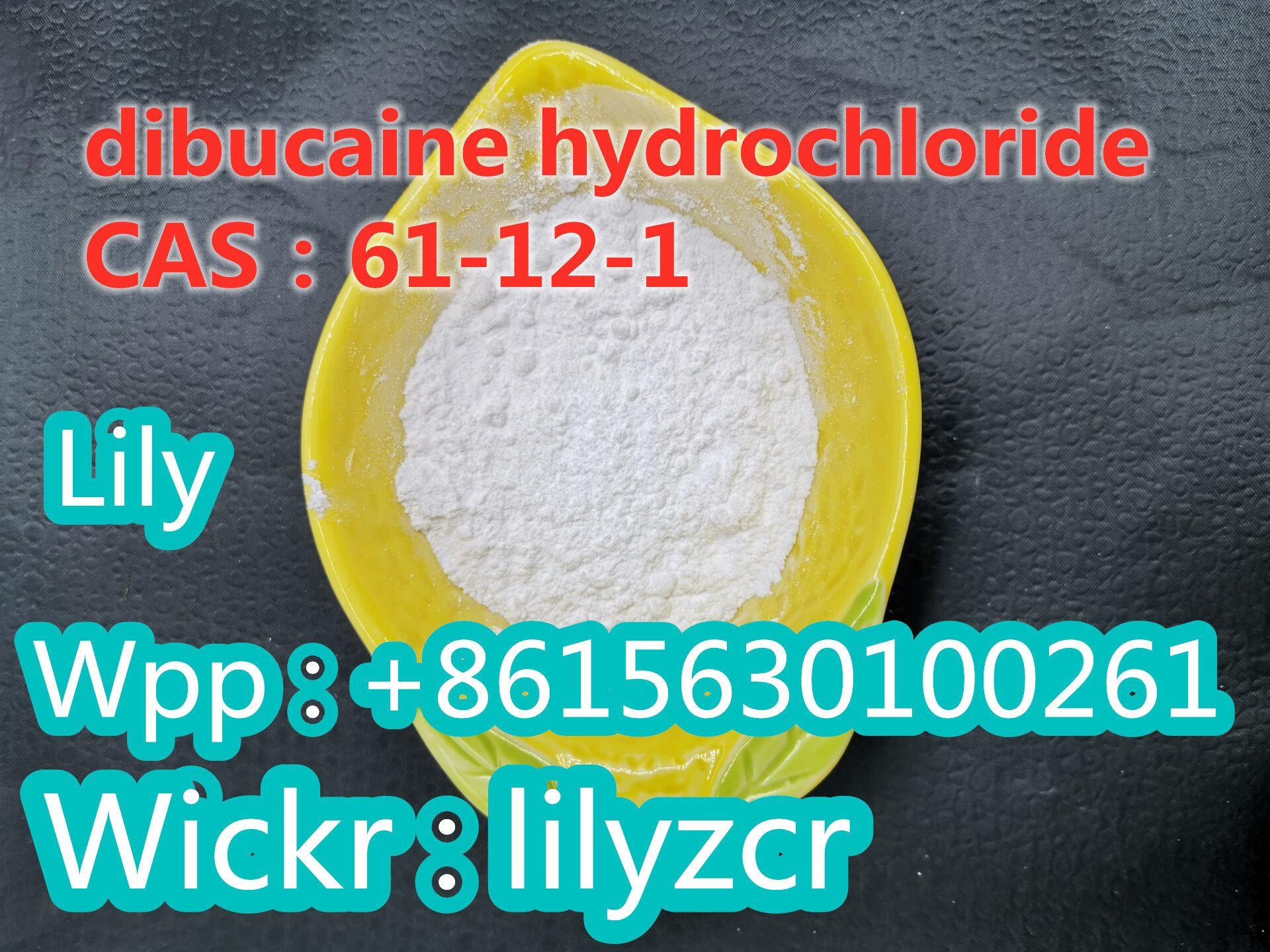 Dibucaine hydrochloride   CAS:61-12-1      Whatsapp:+8615630100261   Wickr:lilyzcr