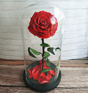 High Quality Preserved Fresh Roses With Competitive Price