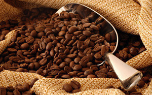 Robusta Coffee Arabica Green Coffee Beans Robusta Coffee Arabica