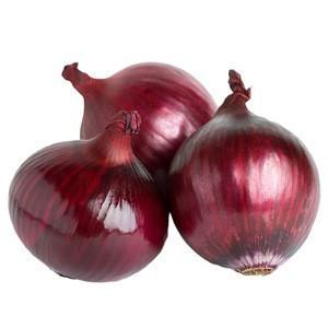 Mesh Bag Packing Fresh Organic Red Onions Export To Dubai