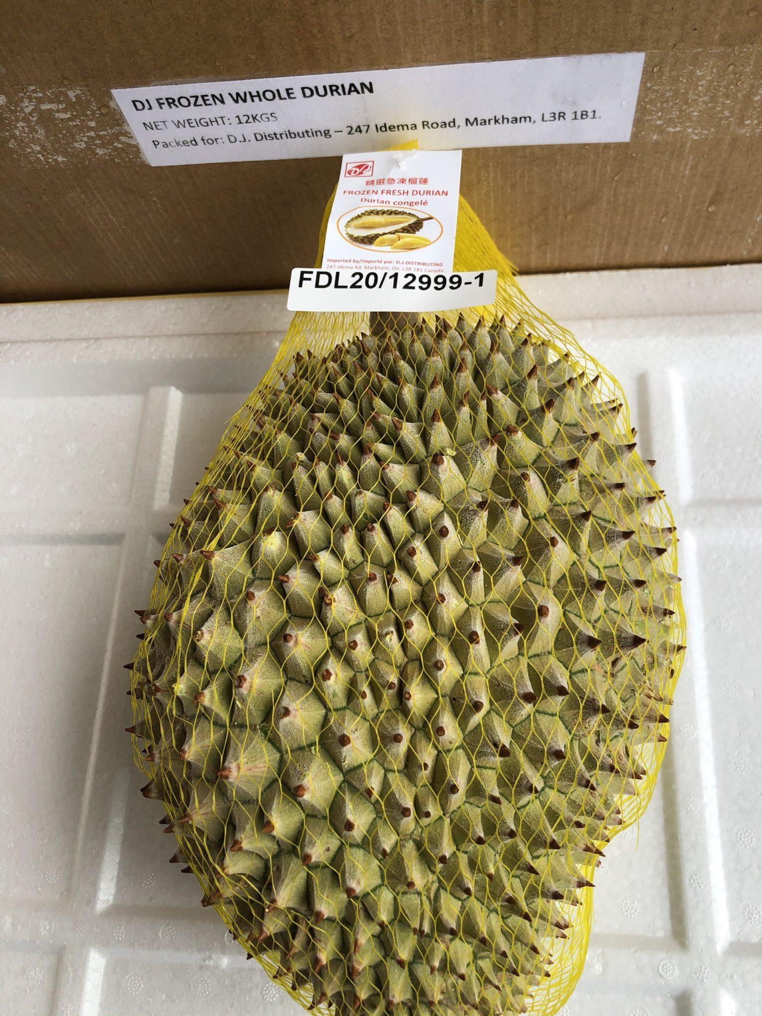 Premium IQF Frozen Durian Vietnamese