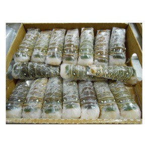 Wholesale Best Price Frozen Lobster Tails For Wholesale
