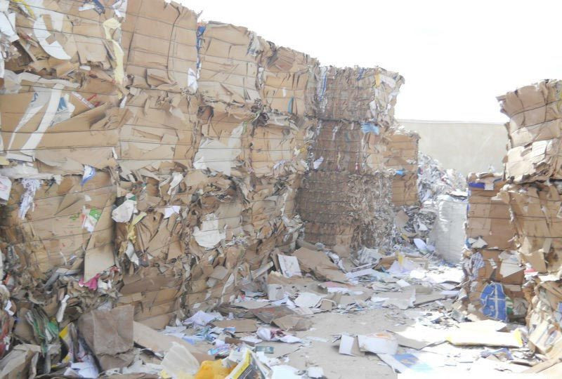 Waste Paper Scrap (OCC, OINP, ONP, SOP, DSOCC, Yellow Pages...etc)