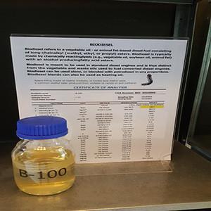 Biodiesel / B100 Thailand
