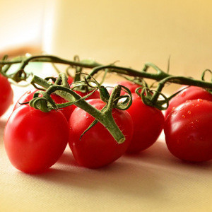 Korea Tomato Supplies High Quality Fresh Vegetable Mini Cherry Red Tomatoes with Good Price Made in Korea