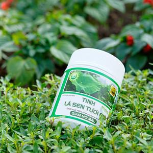 Lotus Tea Powder Natural Organic Slimming Tea Weight Loss Private Label Low MOQ