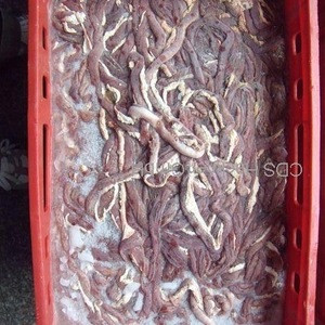 Frozen Pork Small intestine (green runner) ONLY SOUTH KOREA AND JAPAN