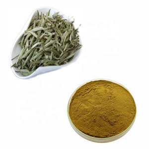 Organic Silver Needle White Tea with Favorable Price