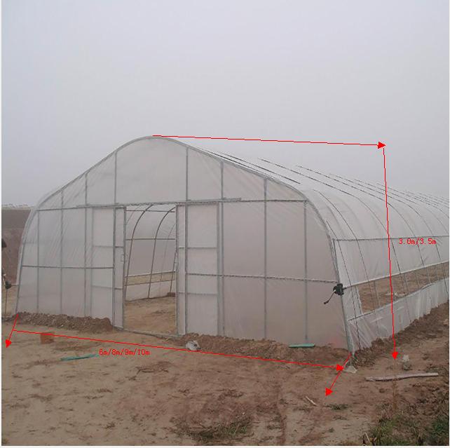 Tunnel Plastic /PE Flim Greenhouse For Vegetables / Flower