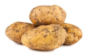 2019 New crop  fresh potato