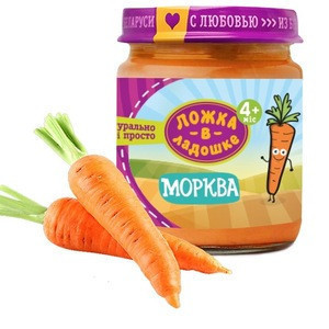 Best organic healthy pumpkin puree 5 month maker baby food