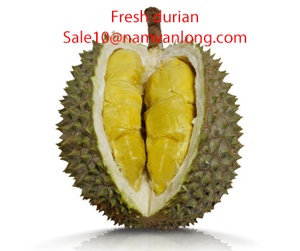 FRESH DURIAN WITH HIGH QUALITY
