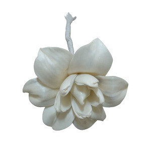 High Quality Top Selling Scented Sola Wood Dried Flower