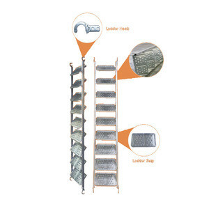 System scaffolding accessories galvanized ladder scaffolding