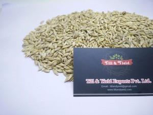 Barley (Human Consumption) / barley (Animal Feed)