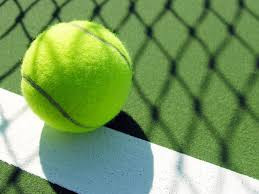 Professional Tennis Ball with your own logo and custom color