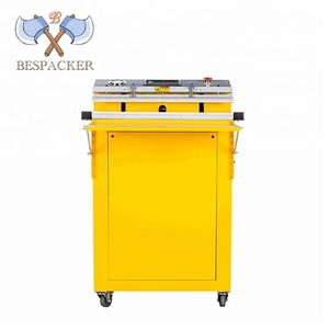 Economy fruit and vegetable packing machine automatic vacuum sealer