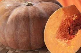 Fresh Pumpkins and Squash