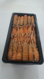 Frozen Scampi | Norway Lobster | Langoustine