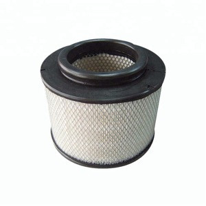 Manufacture High Quality Auto Truck Air Filter (17801-0C010)