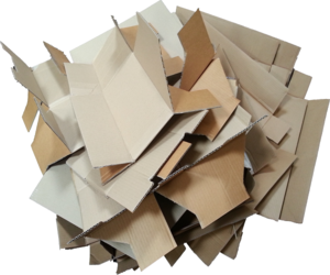 OCC Waste Paper, White waste Tissue paper, OINP, ONP, Yellow pages ready for Export