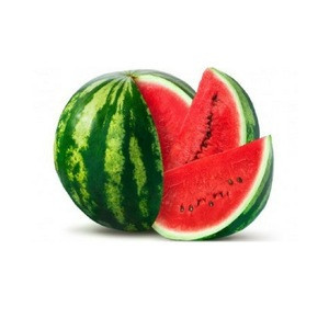 Sweet and Juicy Water Melon at Cheap price from Viet Nam