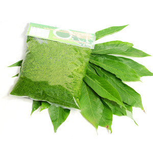 100% FRESH CASSAVA LEAF FOR FOOD INDUSTRY  WITH HIGH QUALITY FROM VIETNAM