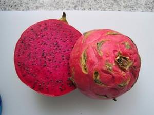 FRESH RED DRAGON FRUITS READY FOR SUPPLY AT GOOD PRICES
