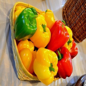 Fresh whole Capsicum peppers