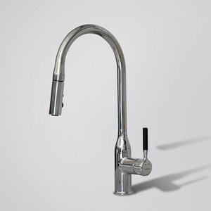 Modern Luxury Brass Single Handle Sprayer Kitchen Faucet