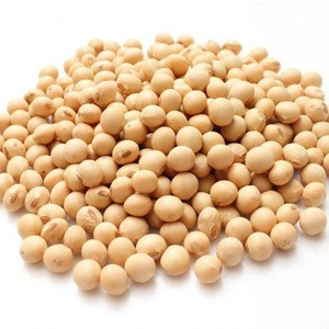 Yellow Grade 2 Non-GMO Soya/Soja/Soybeans, 34% Protein Min, Fit for Human Consumption, Origin: (Brazil, Argentina, USA)