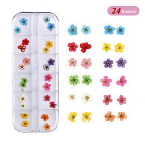 3D Nail Art Decoration Real Dry Dried Flower For UV Gel Acrylic Nail