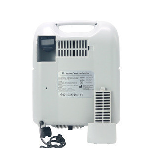 New medical supplies 5L lightweight portable oxygen concentrator for hospital