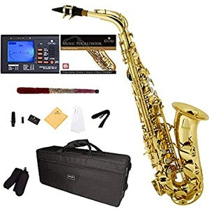 Available in stock new/ Used Mendinis by Cecilios E-Flat Alto Saxophone