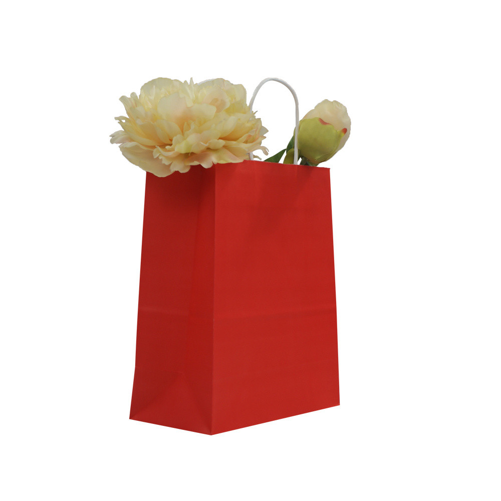 BSCI Audit Wholesale High Quality Kraft Cusotmized Paper Gift Bag