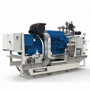 Cost effective100kw Natural Gas CHP Generator