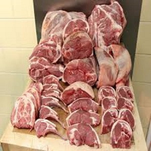 Frozen Camel carcass Meat / Halal frozen camel meat for export