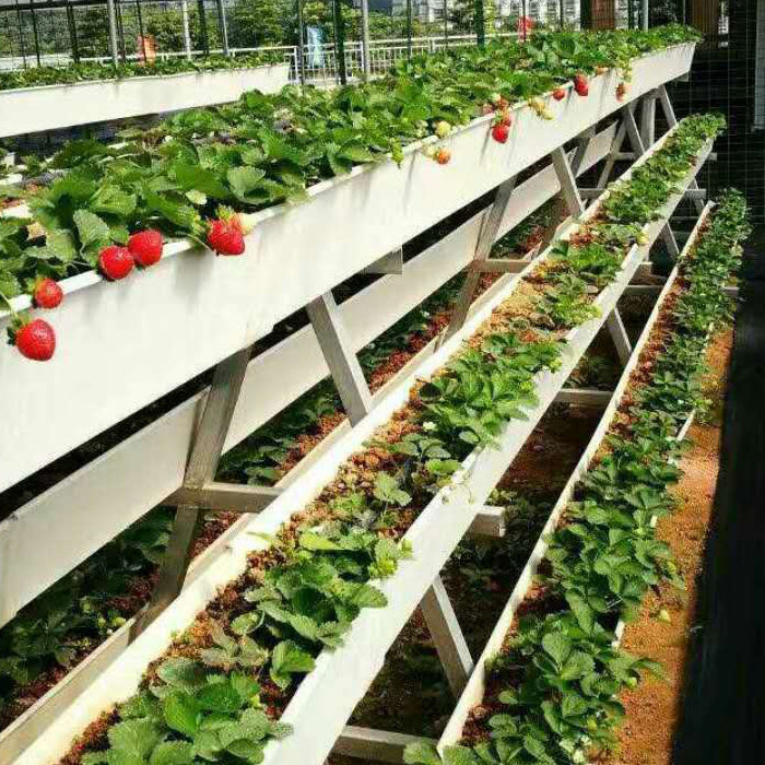 PVC Greenhouse Agricultural Hydroponic Strawberry Growing Systems Cultivation Plastic Gutter Trapezoidal White