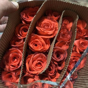 Pure Export Fresh Cut Flowers Roses Wholesale From China