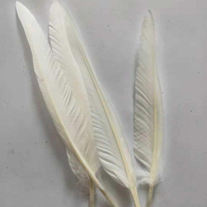 Raw Material White Washed Duck Feather