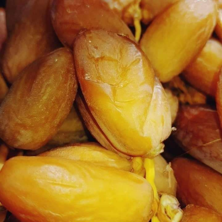 Tunisia Dates (Deglet Nour)