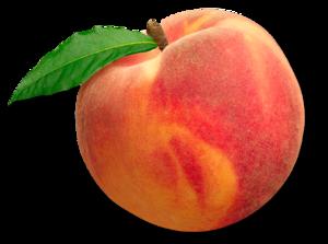 Fresh Peaches , Pakistan Peaches exporter