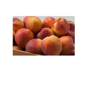 Fresh Red sweet peaches from South Africa