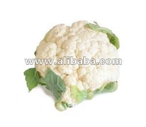 Good Quality Fresh Cauliflower Made in Inida