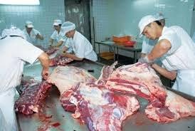 Quality Halal Frozen Boneless Beef Meat for Export Brazilian Origin