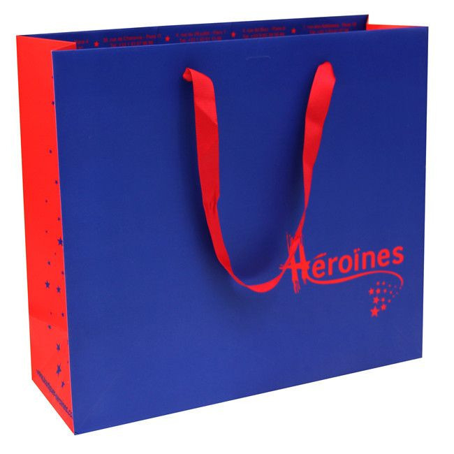 Luxury Shopping  Paper Bag with Logo
