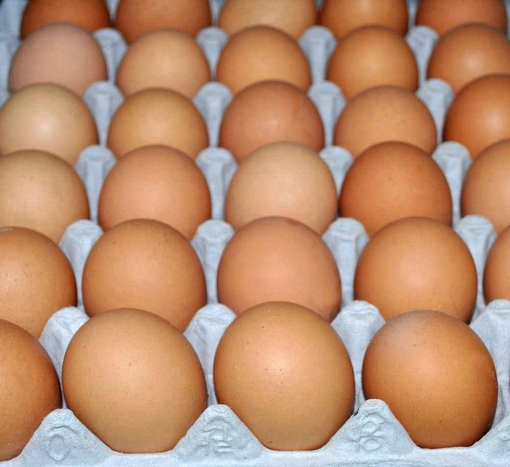 Farm Fresh Chicken Eggs 2020